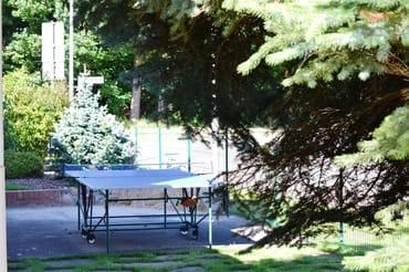 Unsere wetterfeste Tischtennisplatte steht allen Gästen zur freien Verfügung. Netz, Bälle & Schläger befinden sich vor Ort.