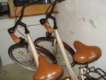 2 Damenräder stehen zur Verfügung