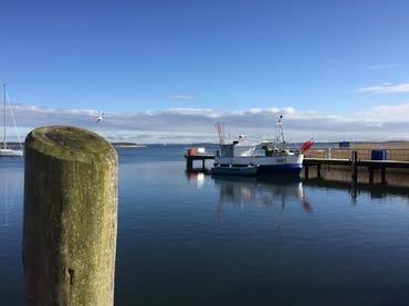 Hafen in Breege