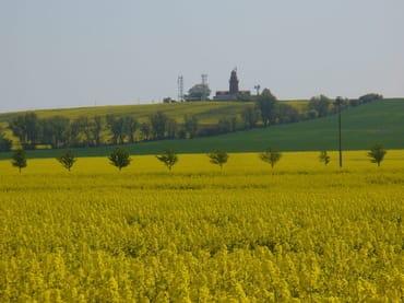 Rapsfeld mit Leuchtturm von Bastorf