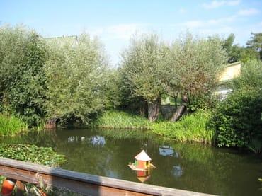 Fewo Catrin Blick von der Terrasse auf den Teich