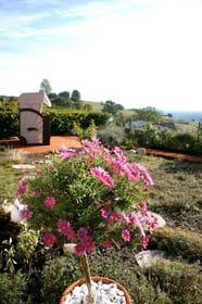 Garten mit eigenem Strandkorb