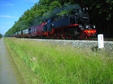 Schmalspurbahn Molli und Ostseeradweg an der Lindenallee