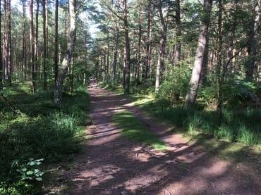 traumhafte Rad- und Wanderwege