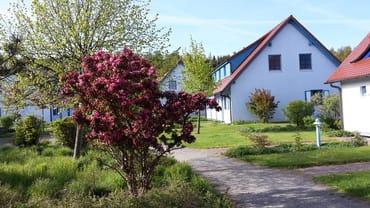 Häusergruppe (Weiler) im Feriendorf