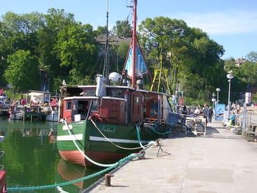 Bei den Fischkuttern im Hafen von Sassnitz
