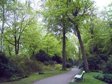 Natur pur, Spazierwege, Radfahrwege durch Parks, Wiesen und auf dem Deich