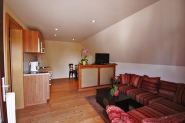 Wohnzimmer mit Küchenbereich