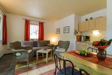 Wohnzimmer mit Pantryküche