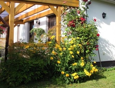Im Sommer blüht der Garten, es ist wundervoll!