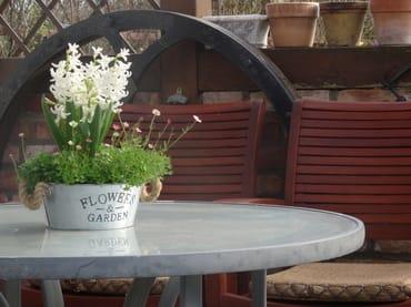 Terrassenblumen im Frühjahr.