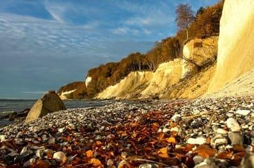 Kreideküste im Herbst