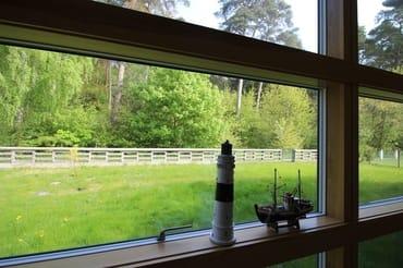 Blick vom Wohnzimmer auf die Spielwiese