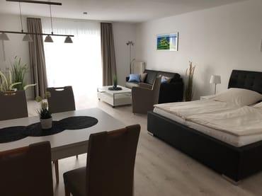 Großzügiges helles Einraum-Appartement mit Doppelbett und Bettsofa