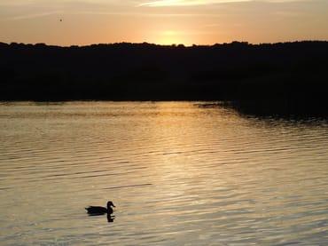 Der Sonne hinterher: Sonnenaufgang am Binzer Strand, Abendstimmung am Schmachter See. Beides ist einfach bezaubernd.