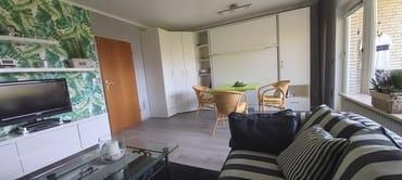 Ansicht über Couch auf Schrankwand 2RaumWunder Nehl mit integriertem 1,60 x 2,00 m Bett und Eßtisch mit Korbsesseln