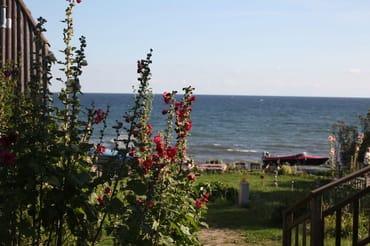Blick von Ihrem Terrassenaufgang zur Ostsee, die hier ein beliebtes Anglerparadies ist. Wer Glück hat, fängt eine der begehrten Meerforellen!