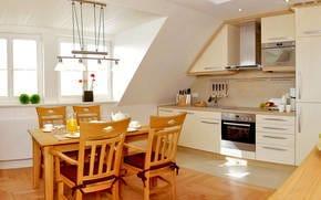 Die im Wohnzimmer integrierte hochwertige Küchenzeile ist mit allen Extras ausgestattet, so dass einem Perfekten Dinner nichts im Wege steht.