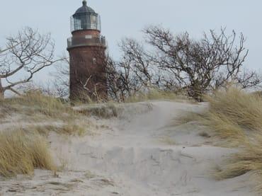 der Darßer Leuchtturm- auch im Winter ein Besuch wert
