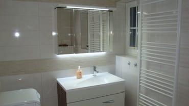 Gästebad mit Dusche im Erdgeschoß
