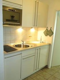 Küche: Kochfeld, Mikrowelle, Kühlschrank,Geschirrspüler