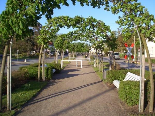 Baabe - Promenade Richtung Strand