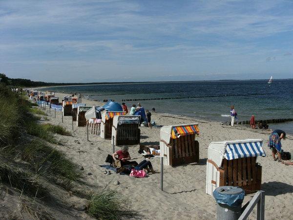 """Der 8 km Sandstrand """"Die Schaabe"""""""