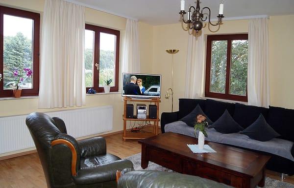 Wohnzimmer mit Schlafcouch & Flat-TV
