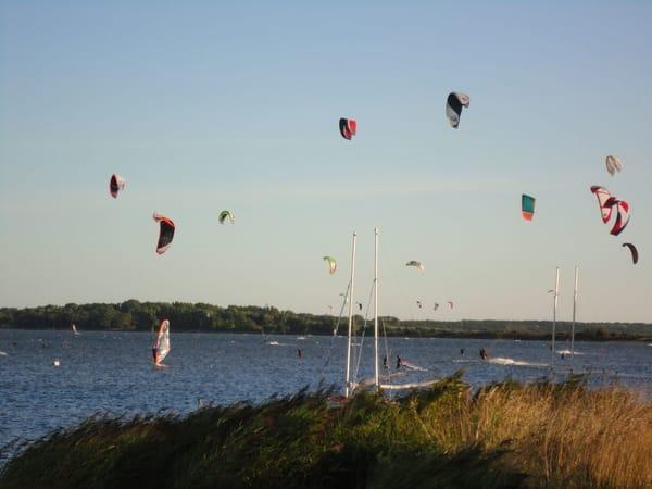Boddenseite Dranske (bei der Surfschule)