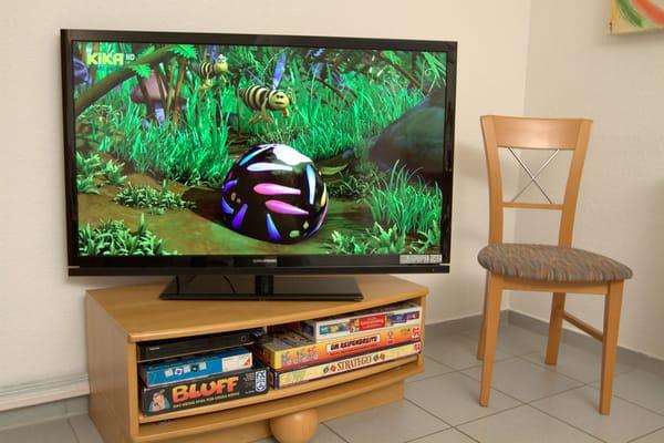Ein HD 46 Zoll Flachbildschirm und ein DVD / CD - Player sind vorhanden.