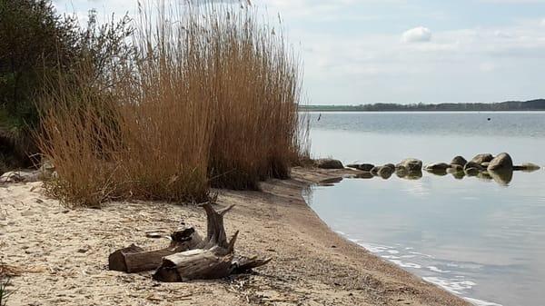 Achterwasser - Halbinsel Gnitz / Insel Usedom