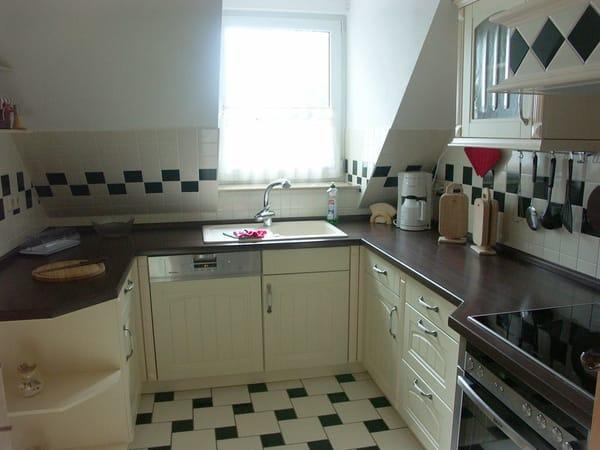 Küche mit Induktionsherd, Spülmaschine und Backofen