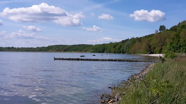 Insel Usedom - Kaminke / Oderhaff