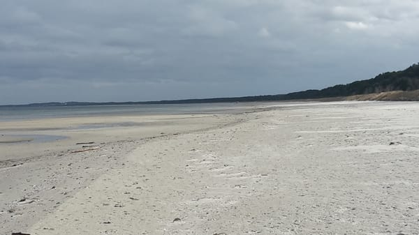 Ostseestrand im Frühjahr