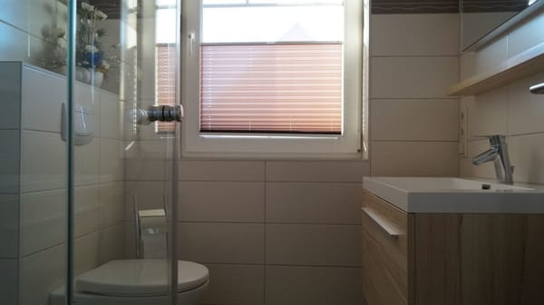 Bad unten mit Dusche und WC