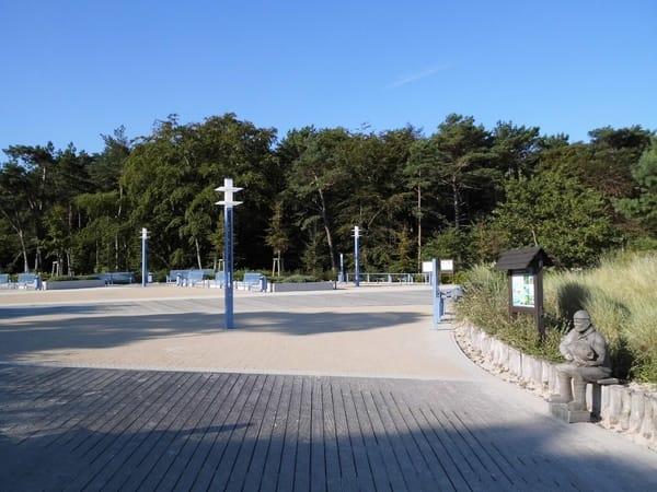 Küstenwald am Zempiner Strand