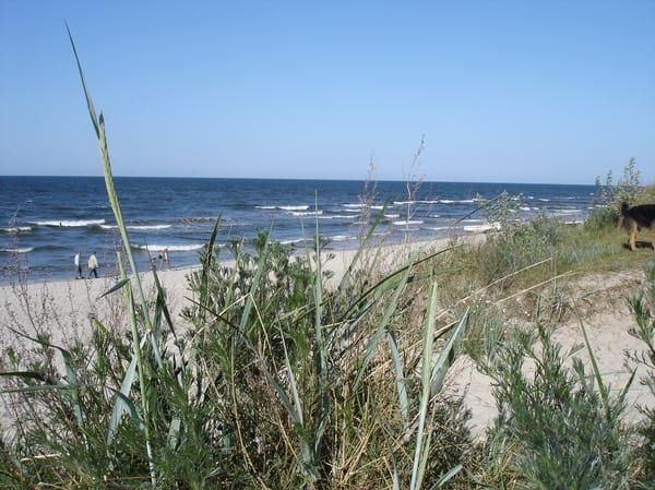 Rundweg - Ostseestrand - Achterwasser - Ostseestrand