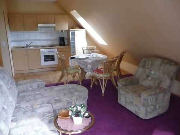 Wohnraum mit Küchenzeile und Essplatz