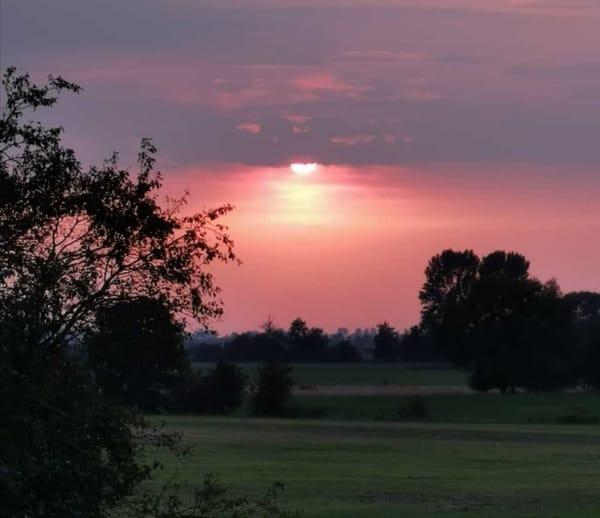 Sonnenaufgang über den Wiesen