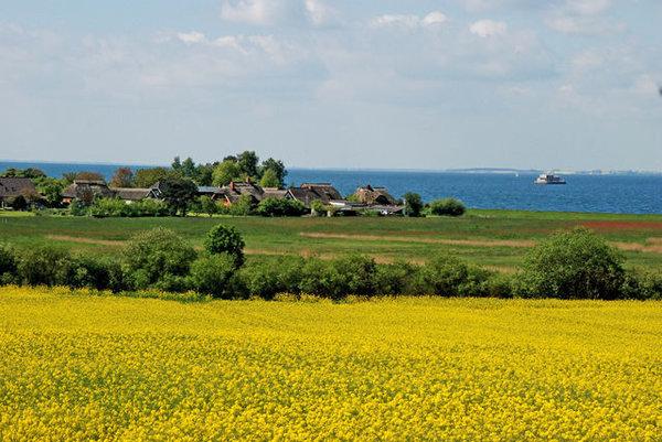 Blick auf's Dorf