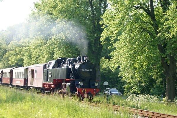 """Traditionsbahn """"Molli""""  (hier: auf der Allee zwischen Bad Doberan und Heiligendamm)"""
