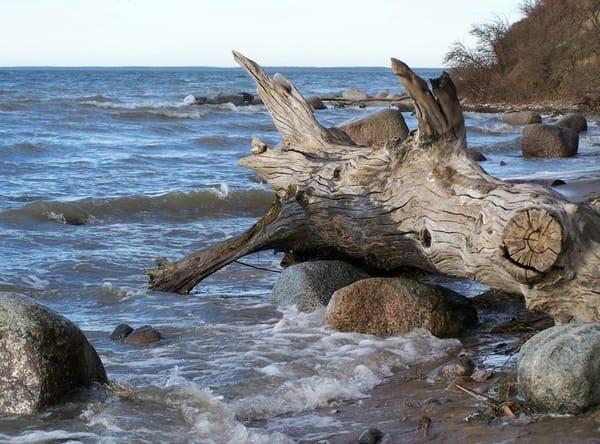 Naturstrand auf Rügen