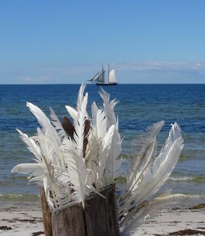 Weiße Segel am Horizont