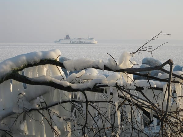Sassnitz- Rügen ist auch im Winter schön
