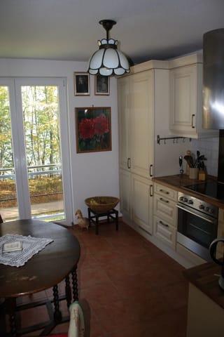 Blick durch die Wohnküche auf das Hochufer