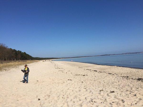 6 km langer Ostseestrand  300 m von der Ferienwohnung entfernt