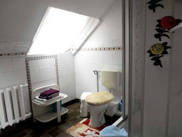 Das Bad mit Dusche