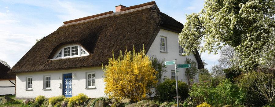 Hausansicht mit bepflanzter Steinmauer, Garten und Parkplatz