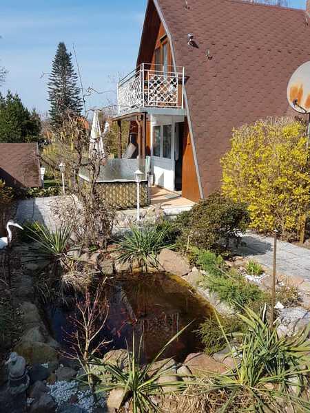 Hier sieht man die wunderschöne Flora und Fauna des hauseigenen Gartenteich vor unserem Finnhaus.