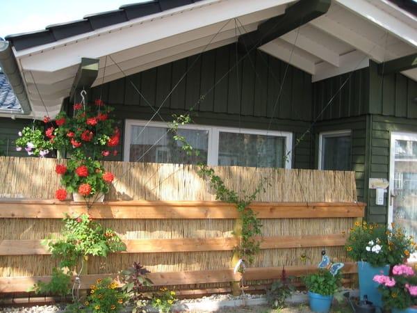 Außenbild mit dahinter liegender Terrasse